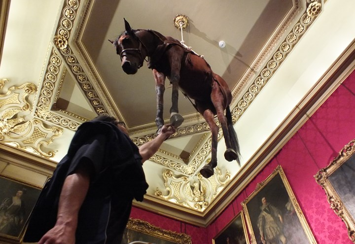 "An image showing the Cattelan installation ""Novecento"" a taxidermy horse, hanging from the ceiling in the Red Drawing room at Blenheim Palace"
