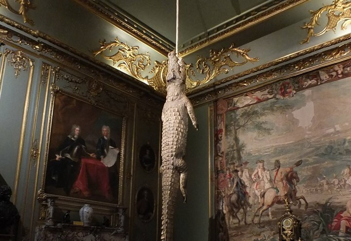 "An image showing the Cattelan installation ""Ego"" a taxidermy crocodile, hanging from the ceiling in the Third Sate room at Blenheim Palace"